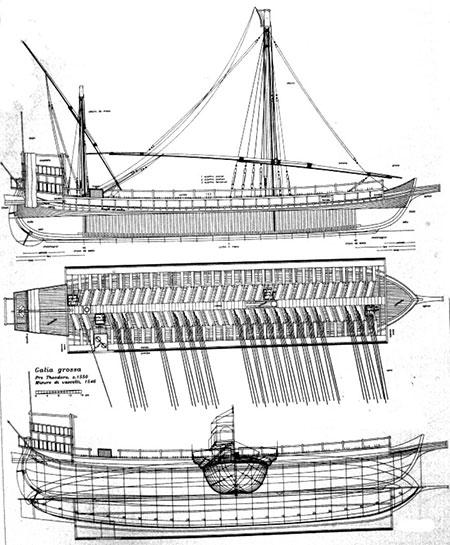 Galea veneziana